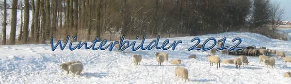 Winterbilder 2012