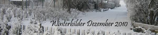 Winterbilder 2010