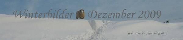 Winterbilder 2009