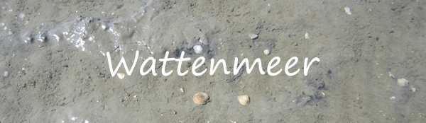 Impressionen vom Wattenmeer